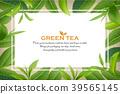 ชา,สีเขียว,เขียว 39565145