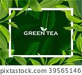 ชา,สีเขียว,เขียว 39565146