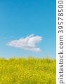 春天圖像強姦開花和藍天和雲彩 39578500