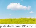 春天圖像強姦開花和藍天和雲彩 39578513