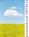 春天圖像強姦開花和藍天和雲彩 39578514
