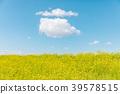 春天圖像強姦開花和藍天和雲彩 39578515