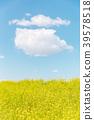 春天圖像強姦開花和藍天和雲彩 39578518