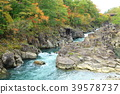 岩手县Mimikei秋叶风景 39578737