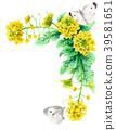 强奸开花和白色蝴蝶装饰框架与水彩 39581651