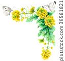 强奸开花和白色蝴蝶装饰框架与水彩 39581821