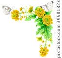 强奸开花和白色蝴蝶装饰框架与水彩 39581823