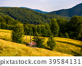hayshed near the forest in mountains 39584131