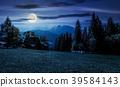 beautiful landscape of Tatra Mountains at night 39584143