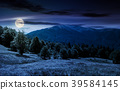 forest on grassy meadows in mountains at night 39584145