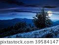 tree on the grassy hillside on at night 39584147