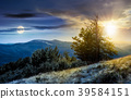 time change concept tree on the grassy hillside 39584151