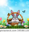 兔子 兔 复活节 39586118