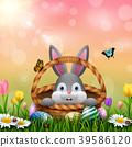 兔子 兔 复活节 39586120