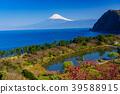 桃花 富士山 海 39588915