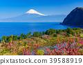 桃花 富士山 海洋 39588919