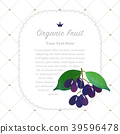 Watercolor nature organic fruit memo frame 39596478
