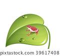 개구리, 잎, 이파리 39617408