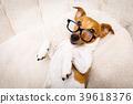 office worker boss dog 39618376