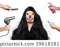 animal, dog, dryer 39618381