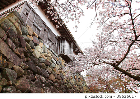 maruoka castle, nationally designated important cultural property, castle tower 39626017
