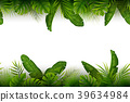 Tropical jungle background with palm trees and lea 39634984