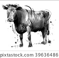 和牛 39636486