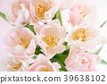 郁金香 花朵 花卉 39638102