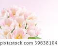 郁金香 花朵 花卉 39638104
