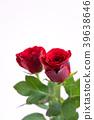 玫瑰 玫瑰花 红 39638646
