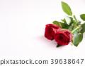 玫瑰 玫瑰花 红 39638647