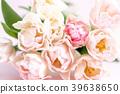 郁金香 花朵 花卉 39638650