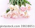 郁金香 花朵 花卉 39638651
