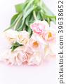 郁金香 花朵 花卉 39638652