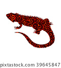 Iguana lizard reptile spiral pattern color 39645847