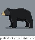 bear, american, vector 39646512