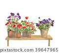 灌裝的 盆栽 花盆 39647965