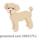 dog, dogs, poodle 39652751