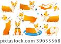 Set of cute dogs breed Welsh Corgi Pembroke on 39655568