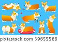Set of cute dogs breed Welsh Corgi Pembroke on 39655569