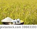 秋天米领域和碗米饭团 39663393