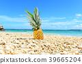 남국의 아름다운 해변과 과일 39665204