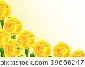 rose, backdrop, backdrops 39666247