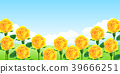 rose, backdrop, backdrops 39666251