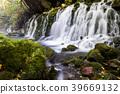 [Akita Prefecture] Mototaki Shimizu 39669132
