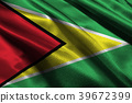 Cooperative Republic of Guyana national flag 3D il 39672399
