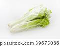 야채, 채소, 잎채소 39675086
