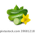 Cucumber. Realistic vector icon isolated on white 39681218