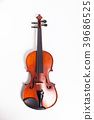 Violin on white background 39686525