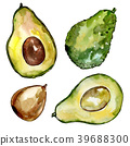 Exotic avocado wild fruit in a watercolor style 39688300